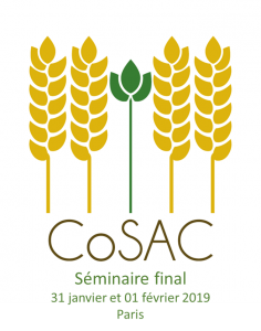 Séminaire final de CoSAC les 31 Janvier et 1er février 2019