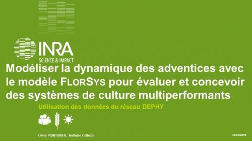Diaporama : Modéliser la dynamique des adventices avec le modèle FlorSys